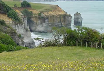 Tongaporutu Whitecliffs Station pasture
